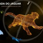 A Jornada do Jaguar